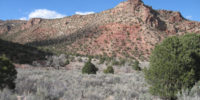 Dry Creek at the Core of Anticline
