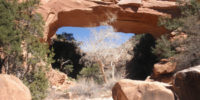 Juanita Arch